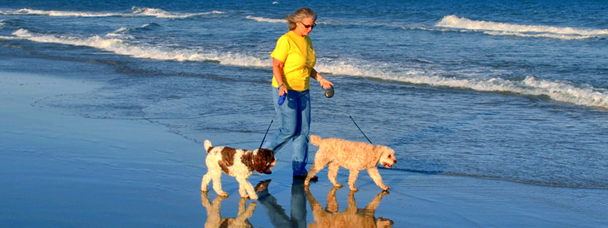 Dog Walking Myrtle Beach Pet Friendly